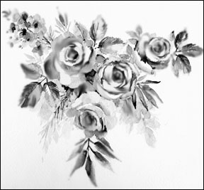 drawings of roses