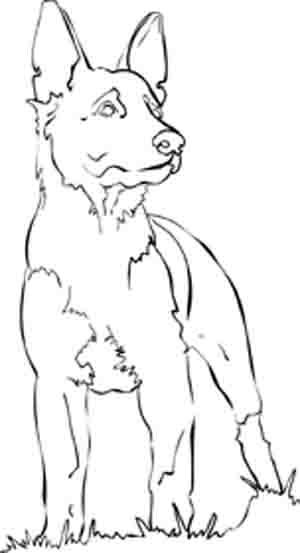 Magical Dog Coloring Pages of Poochies, BowWows, Flea Bags ...
