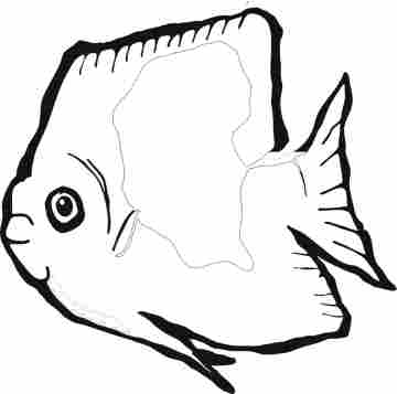 Funny Fish Coloring Pages on Fish Coloring Pages
