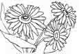 flower coloring-pages