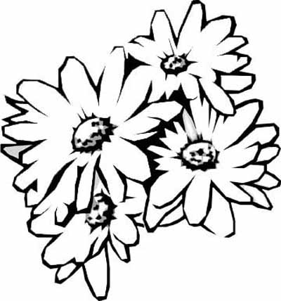 Beautiful Flower Coloring Pages With Delicate Forms Of Natural