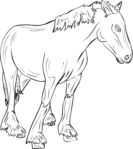 bay horse coloring pages - photo#50
