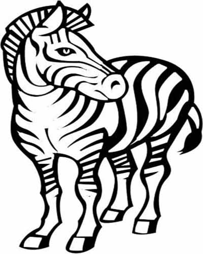 pictures of zebras cartoon