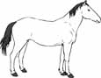 kids horse coloring pages