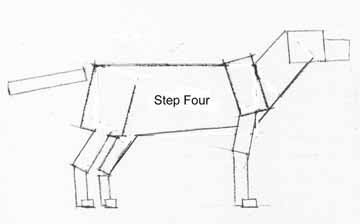 how to draw animals in 6 easy steps