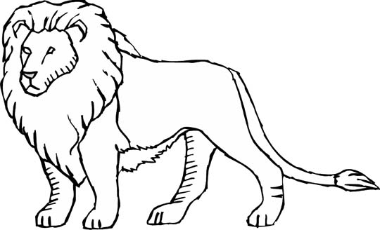 free coloring pages of lions - photo#30