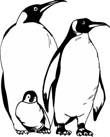 penguin coloring pages for those have happy feet