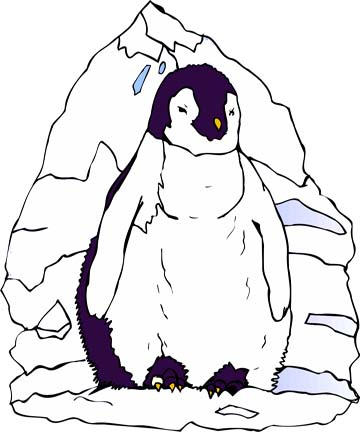 free printable penguin coloring pages - Penguins Coloring Pages Printable
