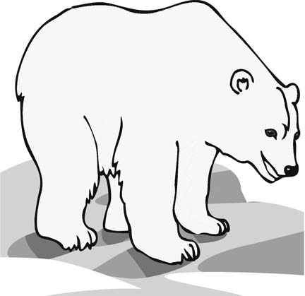 Polar Bear Coloring Pages For Young Children Who Love To Be Creative