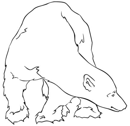 Polar Bear Coloring Pages For Young Children Who Love To Be Creative.