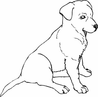 Puppy. puppy coloring pages