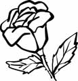 Bonica rose coloring page