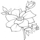 free roses coloring pages